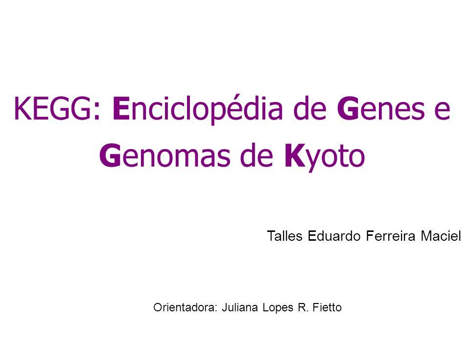 KEGG: Enciclopédia de Genes e Genomas de Kyoto Talles Eduardo Ferreira Maciel Orientadora: Juliana Lopes R. Fietto
