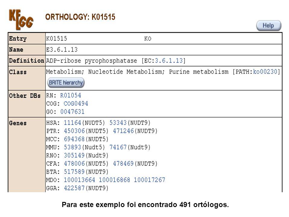 Para este exemplo foi encontrado 491 ortólogos.