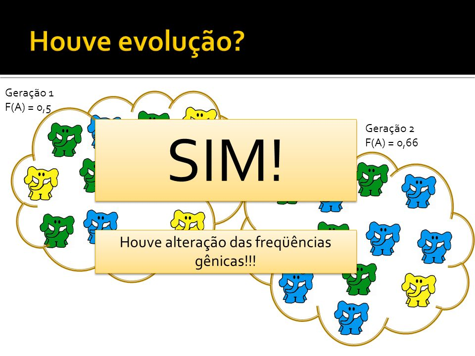 Geração 1 F(A) = 0,5 Geração 2 F(A) = 0,66 SIM! Houve alteração das freqüências gênicas!!!