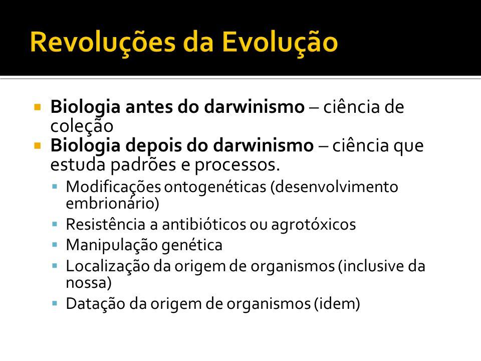 Biologia antes do darwinismo – ciência de coleção Biologia depois do darwinismo – ciência que estuda padrões e processos. Modificações ontogenéticas (