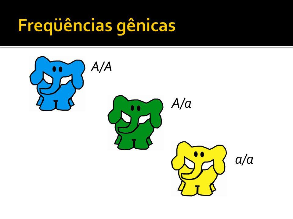 3 elefantes A/A 6 alelos A 6 elefantes A/a 6 alelos A 6 alelos a 3 elefantes a/a 6 alelos a Total: 24 alelos, dos quais 12 são A.