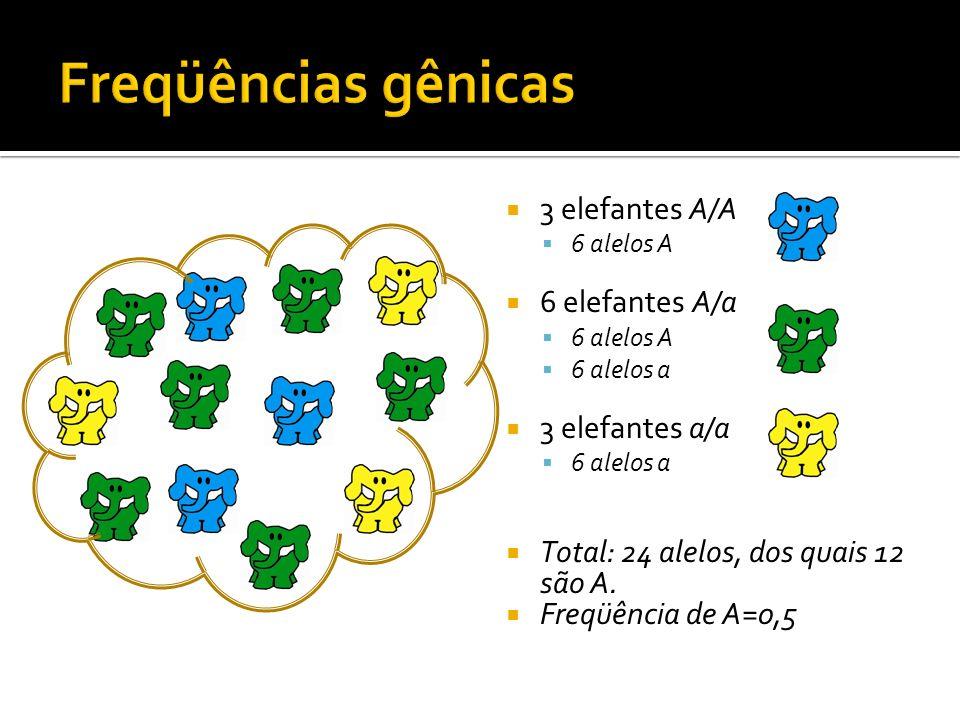 3 elefantes A/A 6 alelos A 6 elefantes A/a 6 alelos A 6 alelos a 3 elefantes a/a 6 alelos a Total: 24 alelos, dos quais 12 são A. Freqüência de A=0,5