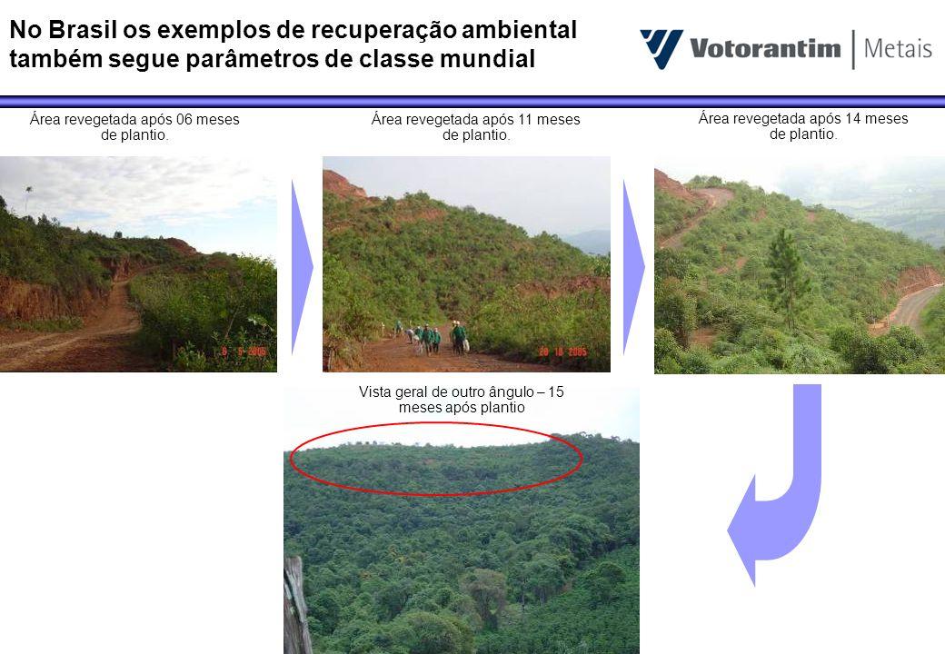 No Brasil os exemplos de recuperação ambiental também segue parâmetros de classe mundial Área revegetada após 06 meses de plantio. Área revegetada apó