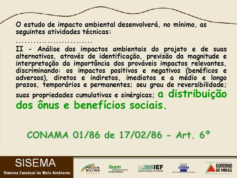 O estudo de impacto ambiental desenvolverá, no mínimo, as seguintes atividades técnicas:...........................