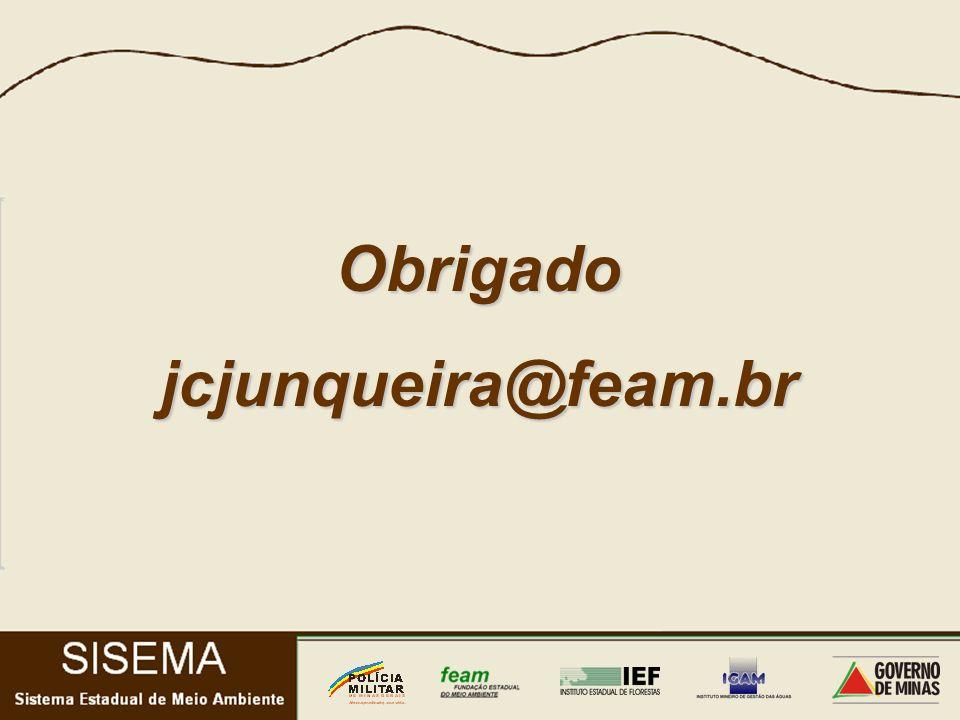 Obrigadojcjunqueira@feam.br