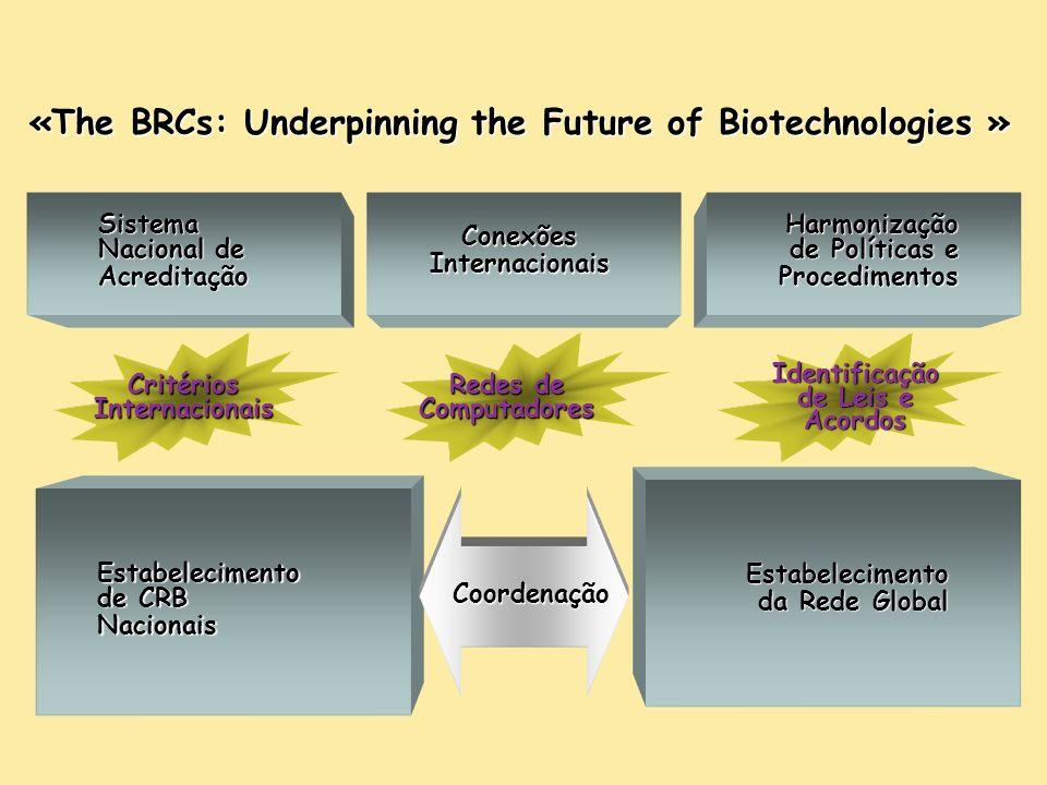 Estabelecimento da Rede Global Estabelecimento de CRB Nacionais Coordenação Sistema Nacional de Acreditação Conexões Internacionais Harmonização de Políticas e Procedimentos Critérios Internacionais Redes de Computadores Identificação de Leis e Acordos «The BRCs: Underpinning the Future of Biotechnologies »
