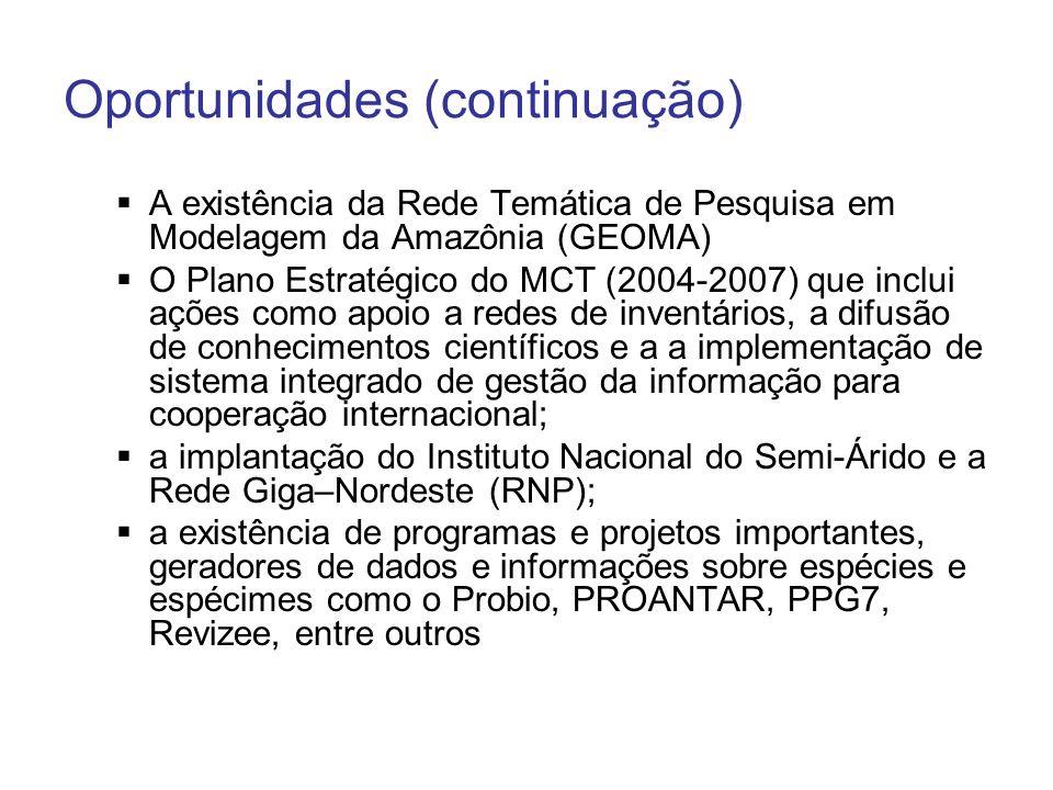 Oportunidades (continuação) A existência da Rede Temática de Pesquisa em Modelagem da Amazônia (GEOMA) O Plano Estratégico do MCT (2004-2007) que incl