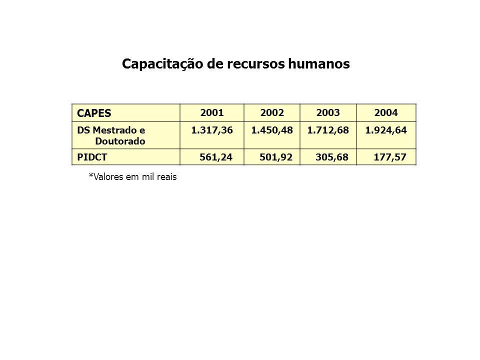 Capacitação de recursos humanos CAPES 2001200220032004 DS Mestrado e Doutorado 1.317,361.450,481.712,681.924,64 PIDCT 561,24 501,92 305,68 177,57 *Val