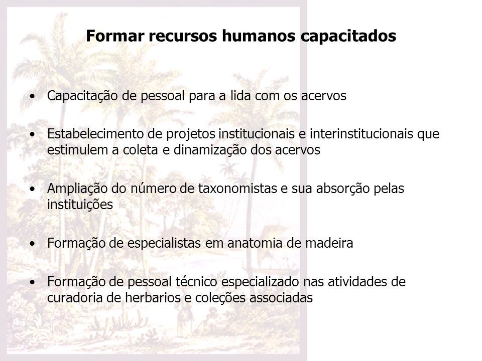 Formar recursos humanos capacitados Capacitação de pessoal para a lida com os acervos Estabelecimento de projetos institucionais e interinstitucionais