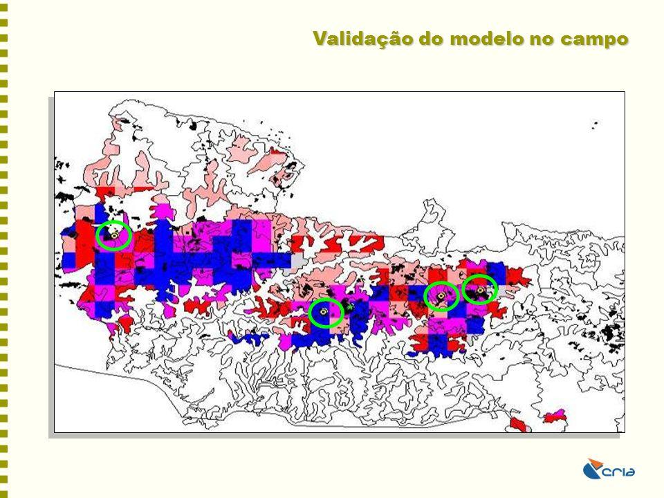 Validação do modelo no campo