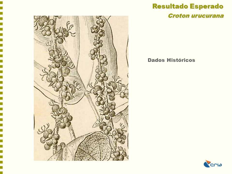Resultado Esperado Croton urucurana Dados Históricos