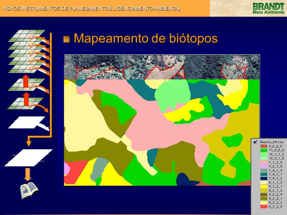 NOVOS INSTRUMENTOS DE PLANEJAMENTO & LICENCIAMENTO AMBIENTAL Mapeamento de biótopos Mapeamento de biótopos