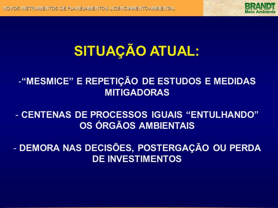 SITUAÇÃO ATUAL: -MESMICE E REPETIÇÃO DE ESTUDOS E MEDIDAS MITIGADORAS - CENTENAS DE PROCESSOS IGUAIS ENTULHANDO OS ÓRGÃOS AMBIENTAIS - DEMORA NAS DECI
