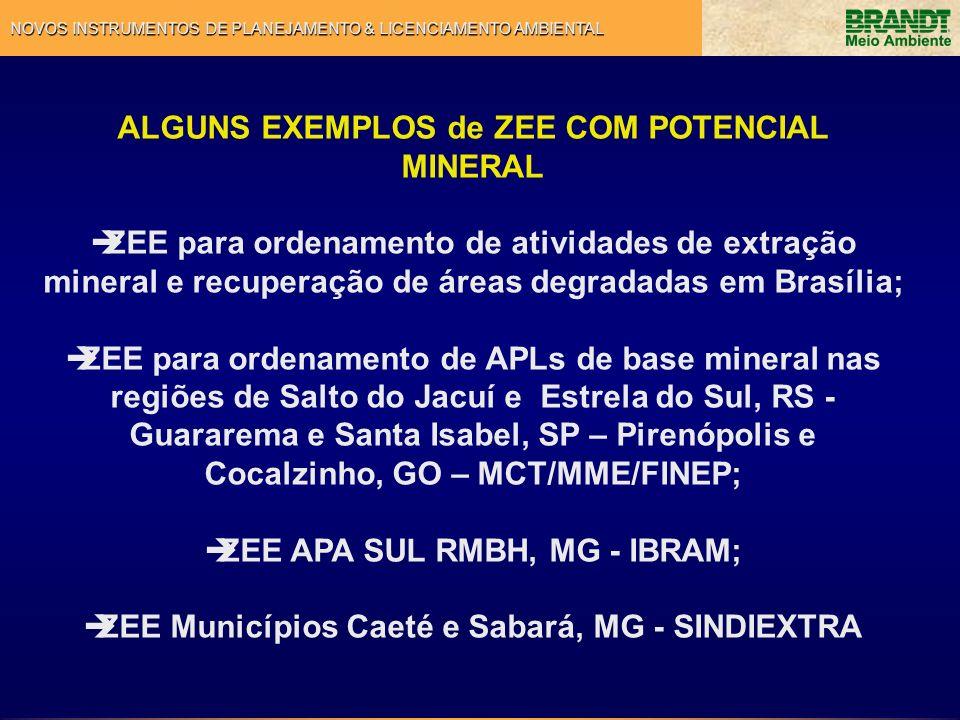 NOVOS INSTRUMENTOS DE PLANEJAMENTO & LICENCIAMENTO AMBIENTAL Tendências de Uso e Ocupação Potencial Mineral INDICAÇÃO DE ZEEMs ZONAS ESPECIAIS DE EXTRAÇÃO MINERAL