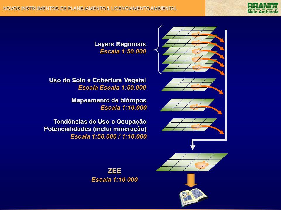 NOVOS INSTRUMENTOS DE PLANEJAMENTO & LICENCIAMENTO AMBIENTAL Layers Regionais Escala 1:50.000 Uso do Solo e Cobertura Vegetal Escala Escala 1:50.000 M