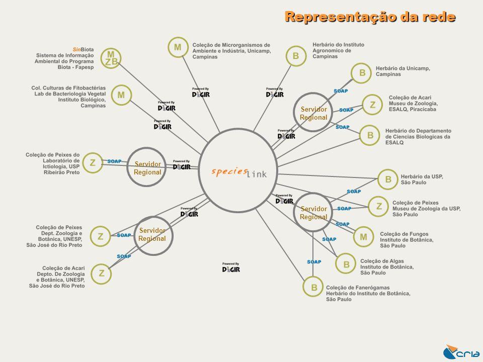 Servidor Regional Representação da rede