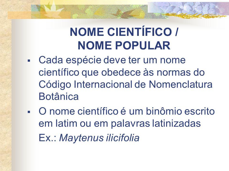 NOME CIENTÍFICO / NOME POPULAR Cada espécie deve ter um nome científico que obedece às normas do Código Internacional de Nomenclatura Botânica O nome científico é um binômio escrito em latim ou em palavras latinizadas Ex.: Maytenus ilicifolia