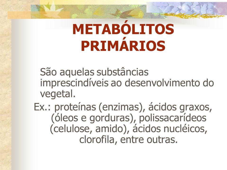 METABÓLITOS PRIMÁRIOS São aquelas substâncias imprescindíveis ao desenvolvimento do vegetal. Ex.: proteínas (enzimas), ácidos graxos, (óleos e gordura