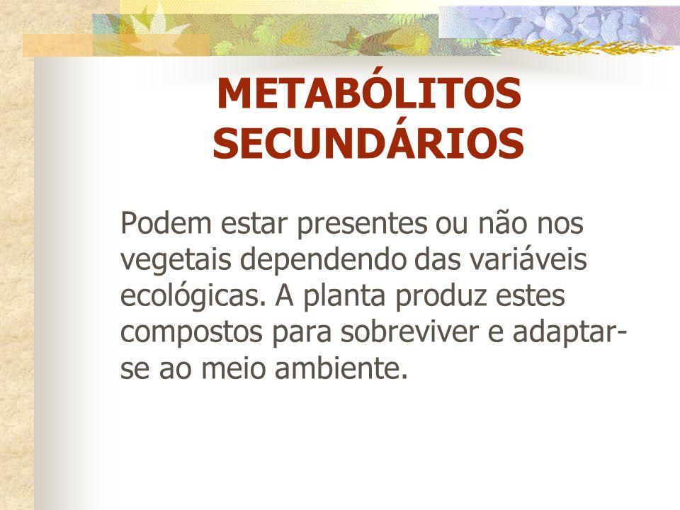 METABÓLITOS SECUNDÁRIOS Podem estar presentes ou não nos vegetais dependendo das variáveis ecológicas. A planta produz estes compostos para sobreviver