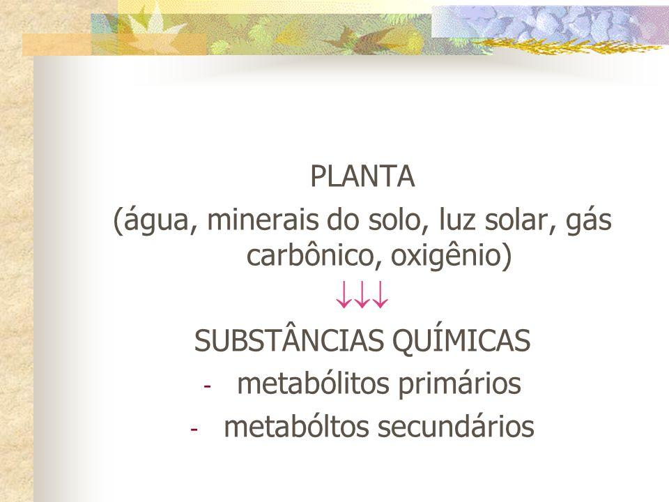 PLANTA (água, minerais do solo, luz solar, gás carbônico, oxigênio) SUBSTÂNCIAS QUÍMICAS - metabólitos primários - metabóltos secundários