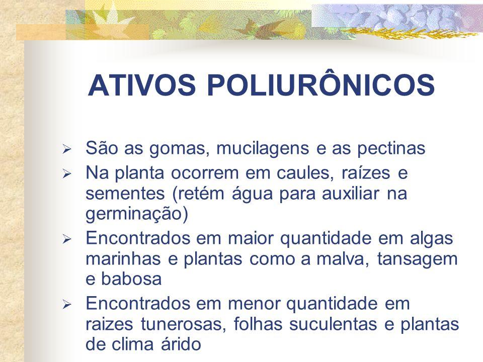 ATIVOS POLIURÔNICOS São as gomas, mucilagens e as pectinas Na planta ocorrem em caules, raízes e sementes (retém água para auxiliar na germinação) Encontrados em maior quantidade em algas marinhas e plantas como a malva, tansagem e babosa Encontrados em menor quantidade em raizes tunerosas, folhas suculentas e plantas de clima árido