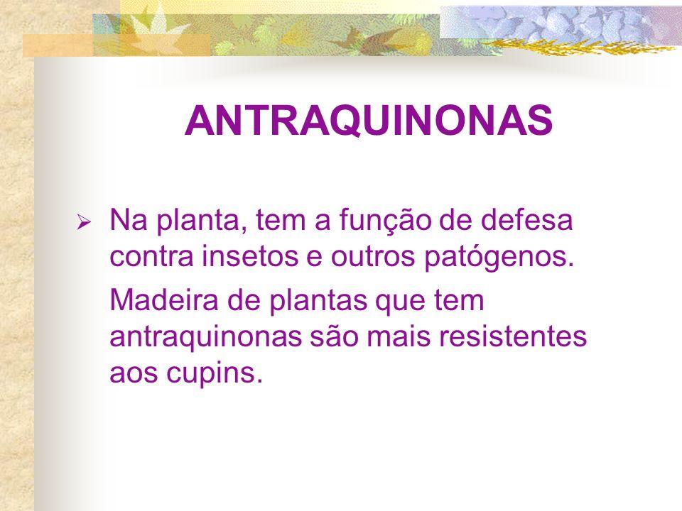 ANTRAQUINONAS Na planta, tem a função de defesa contra insetos e outros patógenos. Madeira de plantas que tem antraquinonas são mais resistentes aos c