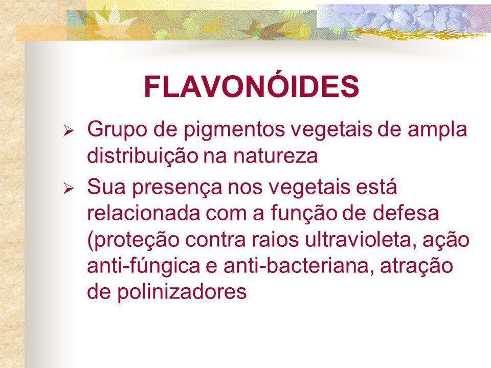 FLAVONÓIDES Grupo de pigmentos vegetais de ampla distribuição na natureza Sua presença nos vegetais está relacionada com a função de defesa (proteção contra raios ultravioleta, ação anti-fúngica e anti-bacteriana, atração de polinizadores