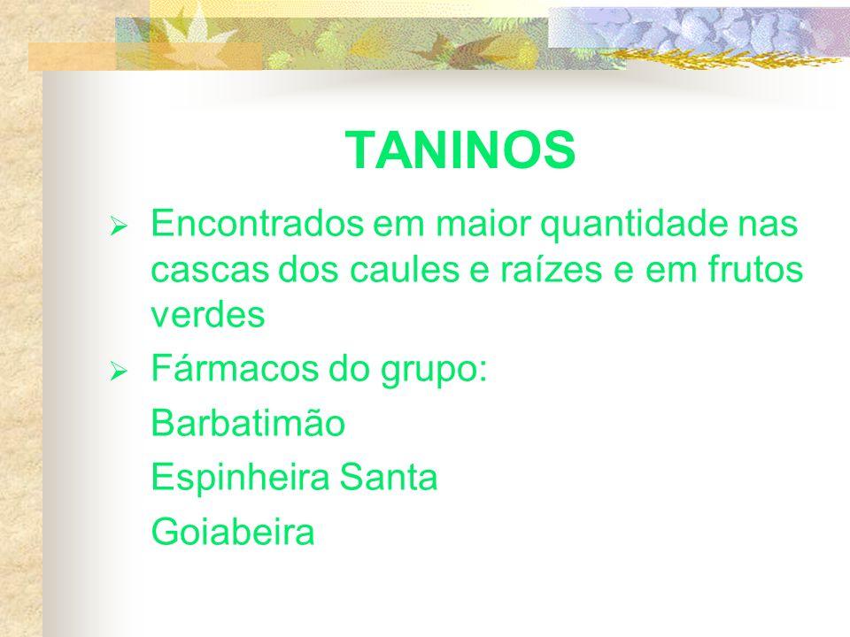 TANINOS Encontrados em maior quantidade nas cascas dos caules e raízes e em frutos verdes Fármacos do grupo: Barbatimão Espinheira Santa Goiabeira