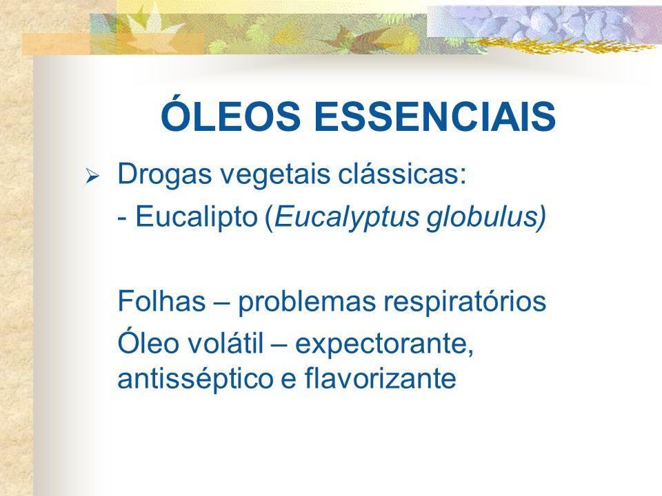 ÓLEOS ESSENCIAIS Drogas vegetais clássicas: - Eucalipto (Eucalyptus globulus) Folhas – problemas respiratórios Óleo volátil – expectorante, antissépti
