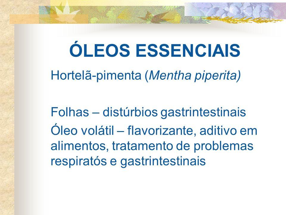 ÓLEOS ESSENCIAIS Hortelã-pimenta (Mentha piperita) Folhas – distúrbios gastrintestinais Óleo volátil – flavorizante, aditivo em alimentos, tratamento de problemas respiratós e gastrintestinais
