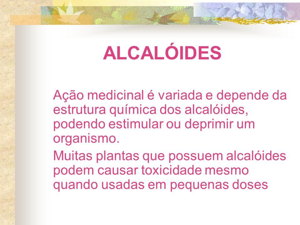 ALCALÓIDES Ação medicinal é variada e depende da estrutura química dos alcalóides, podendo estimular ou deprimir um organismo. Muitas plantas que poss