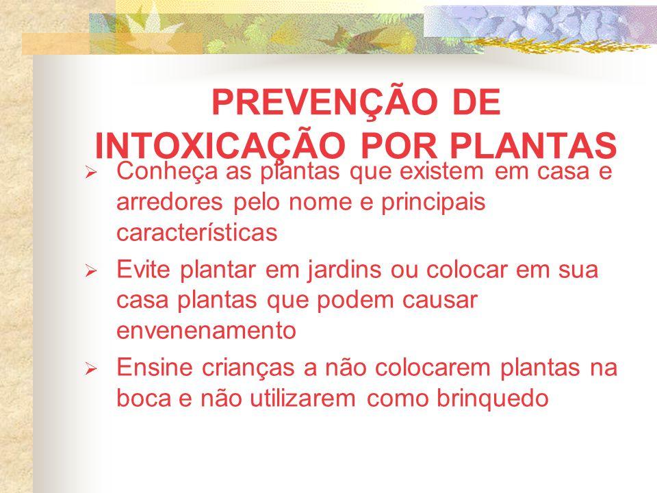 PREVENÇÃO DE INTOXICAÇÃO POR PLANTAS Conheça as plantas que existem em casa e arredores pelo nome e principais características Evite plantar em jardin