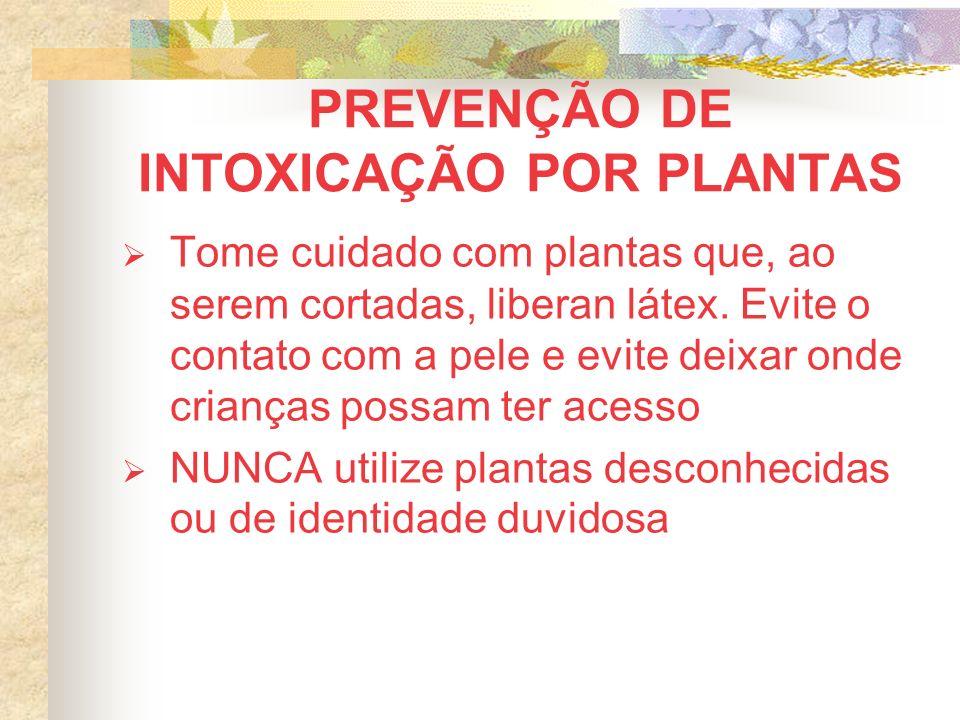 PREVENÇÃO DE INTOXICAÇÃO POR PLANTAS Tome cuidado com plantas que, ao serem cortadas, liberan látex. Evite o contato com a pele e evite deixar onde cr