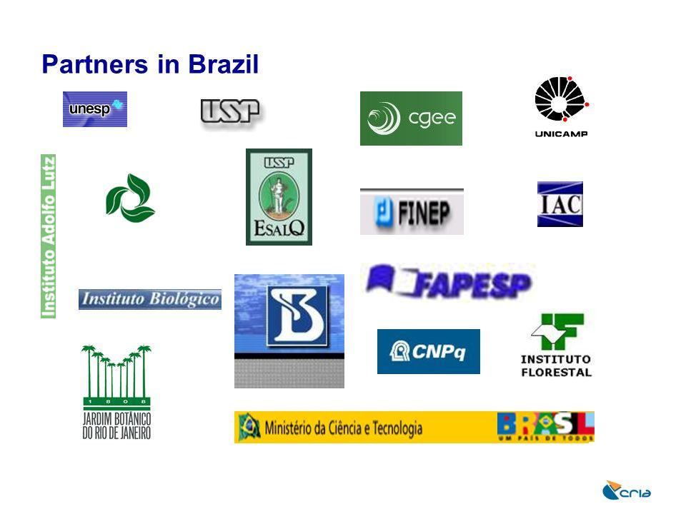Partners in Brazil