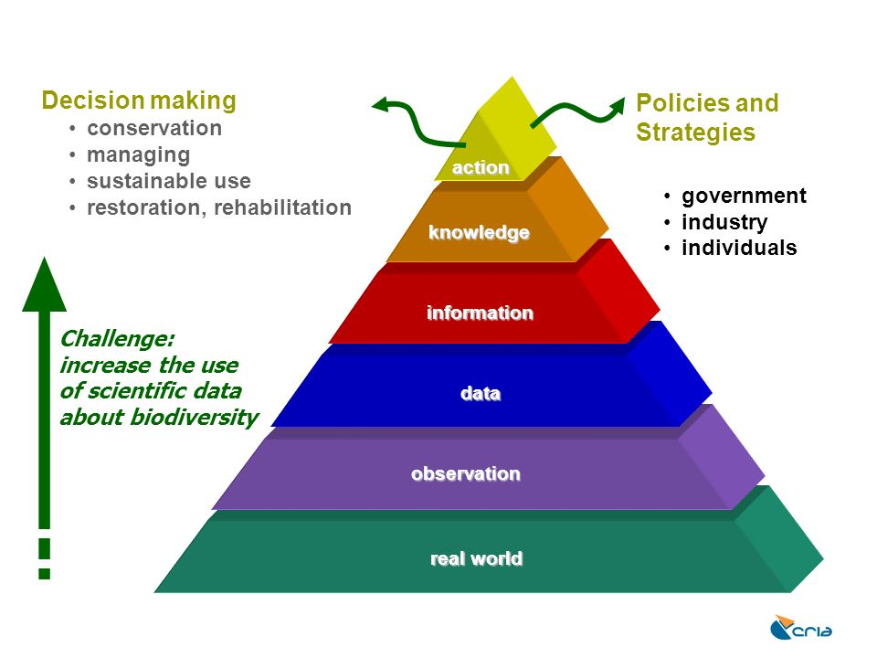 data information knowledge action Challenge: increase the use of scientific data about biodiversity real world observation Decision making conservatio