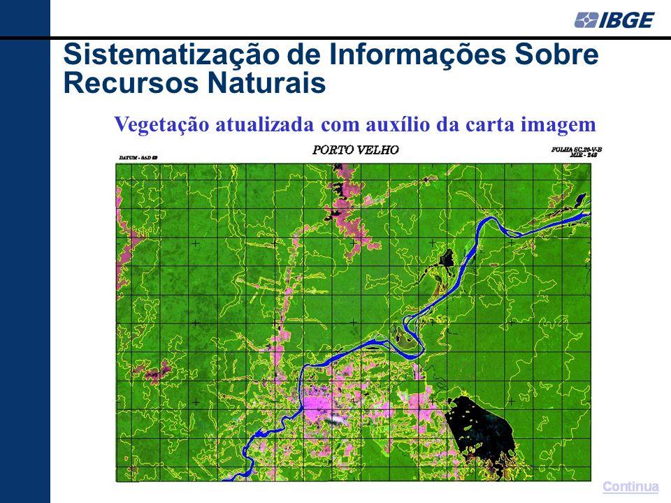 Mapa Final do tema Vegetação Sistematização de Informações Sobre Recursos Naturais