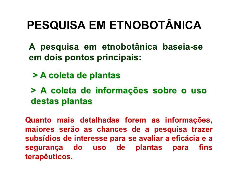 PESQUISA EM ETNOBOTÂNICA A pesquisa em etnobotânica baseia-se em dois pontos principais: > A coleta de plantas > A coleta de informações sobre o uso d