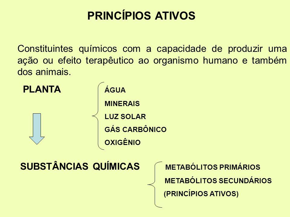 PRINCÍPIOS ATIVOS Constituintes químicos com a capacidade de produzir uma ação ou efeito terapêutico ao organismo humano e também dos animais. PLANTA