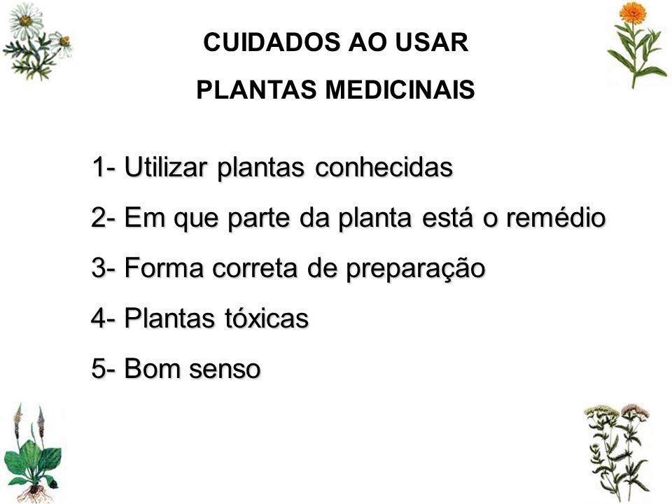 CUIDADOS AO USAR PLANTAS MEDICINAIS 1- Utilizar plantas conhecidas 2- Em que parte da planta está o remédio 3- Forma correta de preparação 4- Plantas