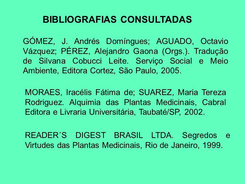 BIBLIOGRAFIAS CONSULTADAS GÓMEZ, J. Andrés Domíngues; AGUADO, Octavio Vázquez; PÉREZ, Alejandro Gaona (Orgs.). Tradução de Silvana Cobucci Leite. Serv