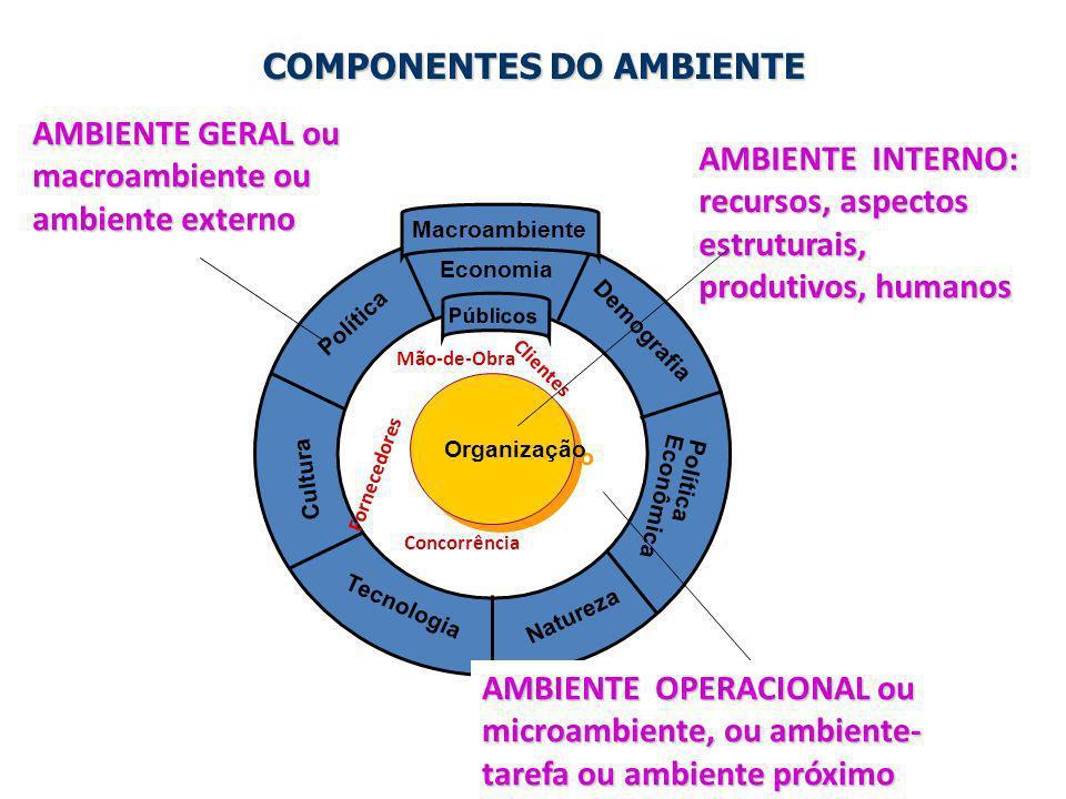 3 Organização Política Economia Demografia Tecnologia Natureza Cultura Política Econômica Públicos Macroambiente COMPONENTES DO AMBIENTE COMPONENTES D