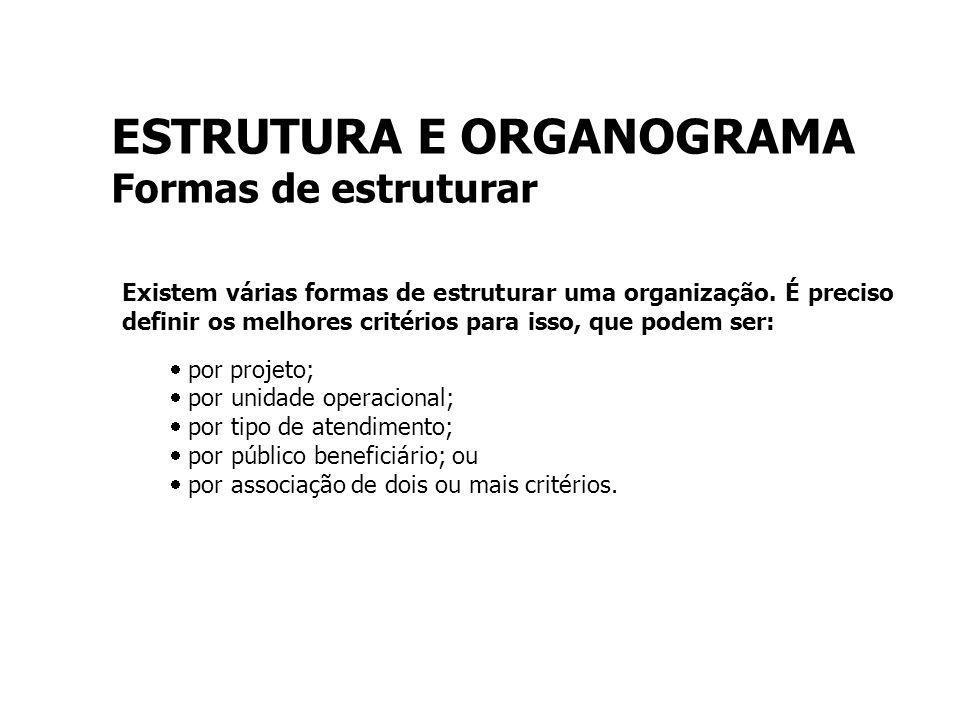 ESTRUTURA E ORGANOGRAMA Formas de estruturar Existem várias formas de estruturar uma organização.