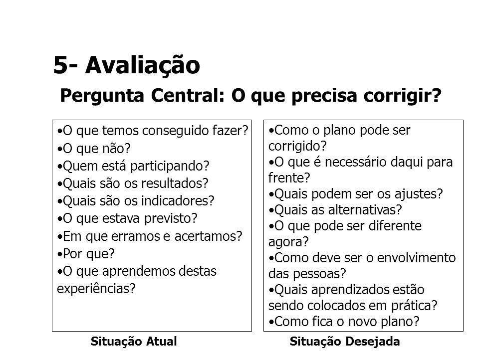 5- Avaliação Pergunta Central: O que precisa corrigir? Como o plano pode ser corrigido? O que é necessário daqui para frente? Quais podem ser os ajust