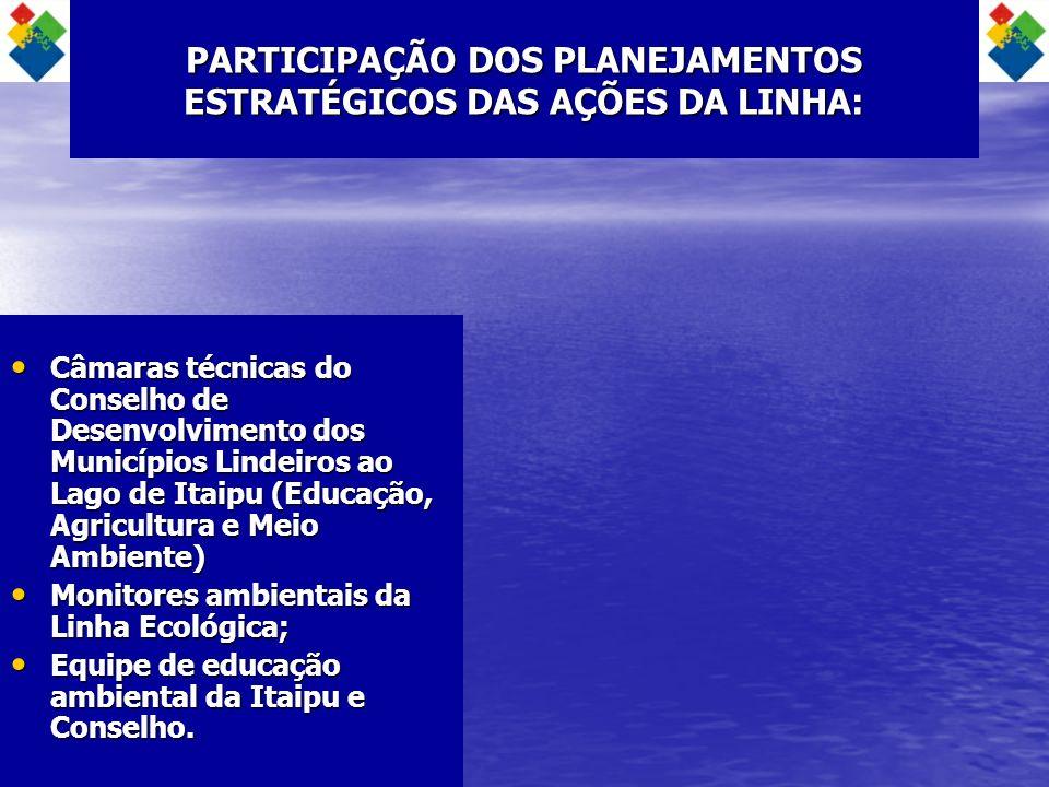 PARTICIPAÇÃO DOS PLANEJAMENTOS ESTRATÉGICOS DAS AÇÕES DA LINHA: Câmaras técnicas do Conselho de Desenvolvimento dos Municípios Lindeiros ao Lago de It