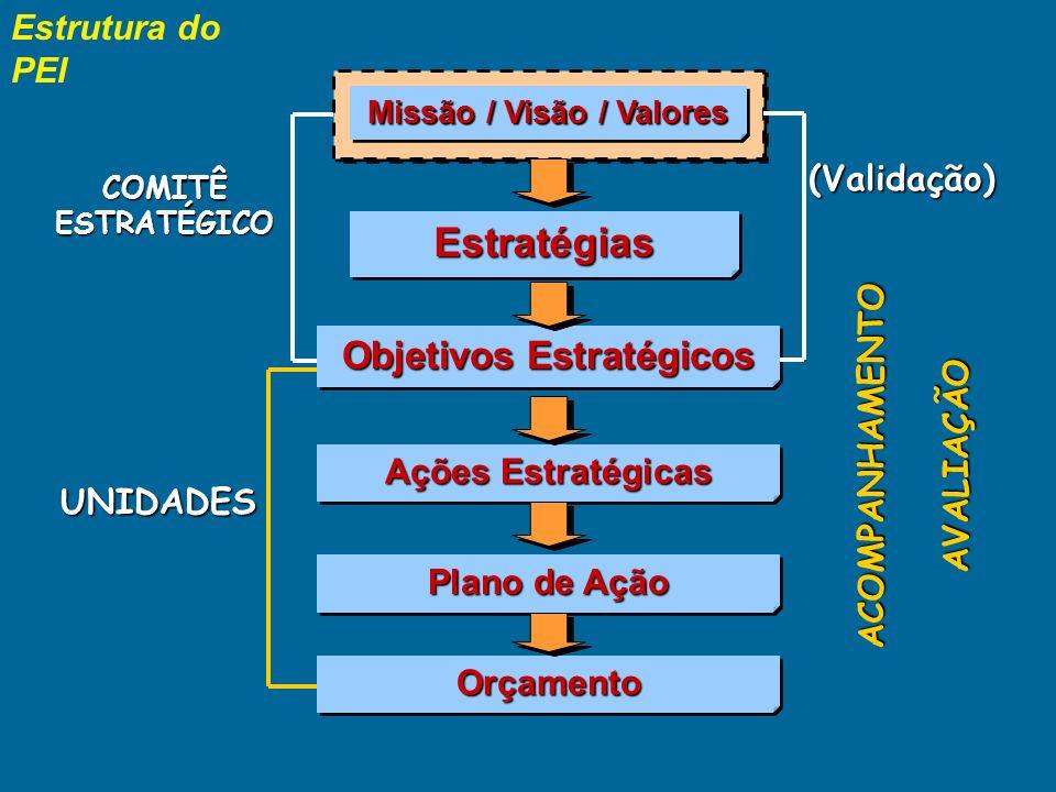 Modelo do PEI Implementação e Controle Acompanhamento Acompanhamento Missão /Visão ObjetivosObjetivos EstratégiasEstratégias Análise Ambiental Cenário Externo Cenário Interno ValoresValores Programa s Projeto s AçõesAções ORÇAMENTOORÇAMENTO PLANO DE AÇÃO
