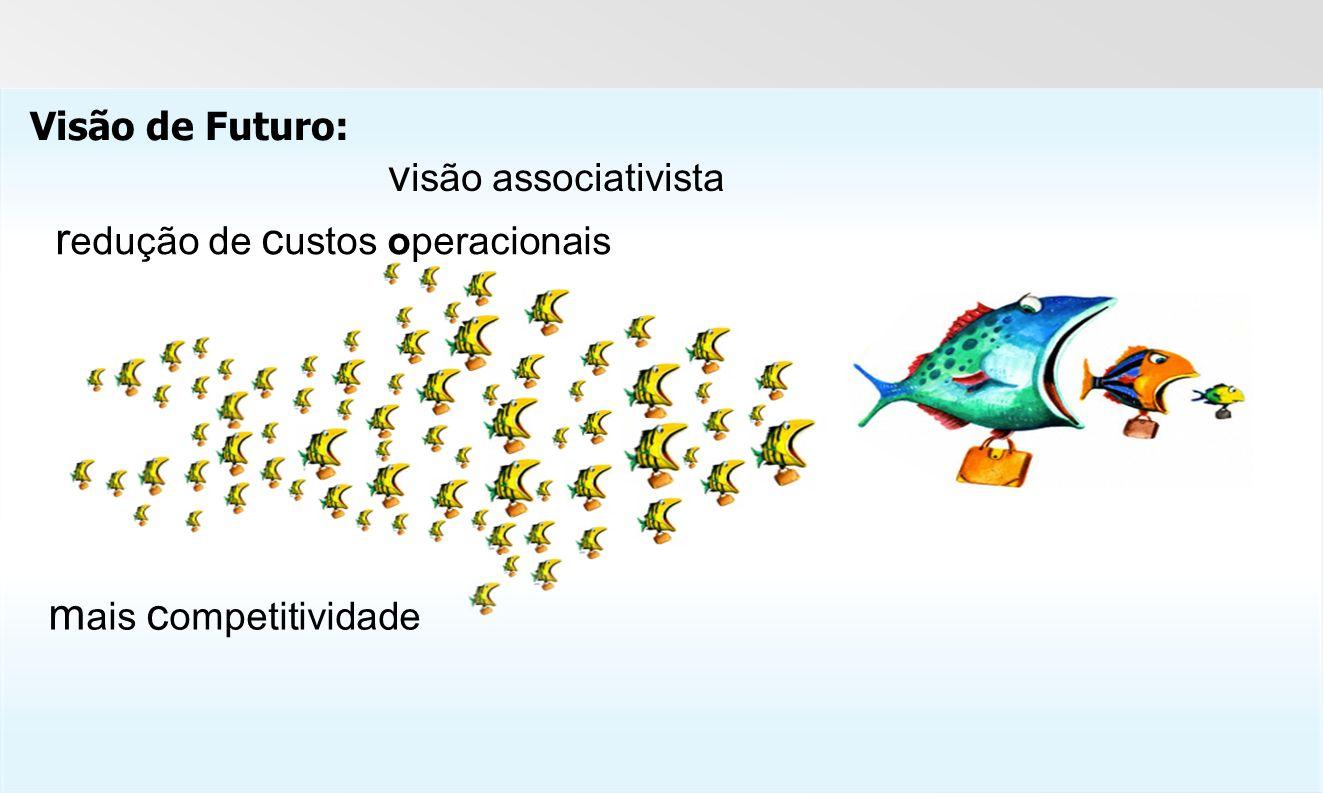 m ais c ompetitividade r edução de c ustos operacionais v isão associativista Visão de Futuro: