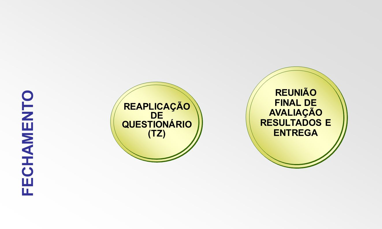 FECHAMENTO REAPLICAÇÃO DE QUESTIONÁRIO (TZ) REUNIÃO FINAL DE AVALIAÇÃO RESULTADOS E ENTREGA