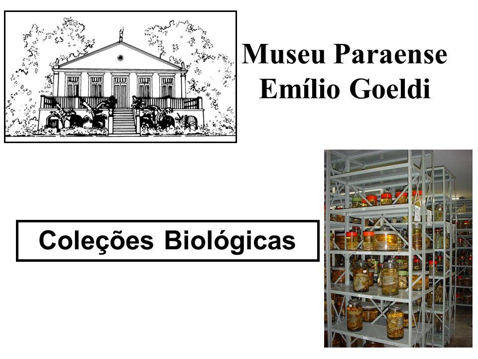 Museu Paraense Emílio Goeldi Coleções Biológicas