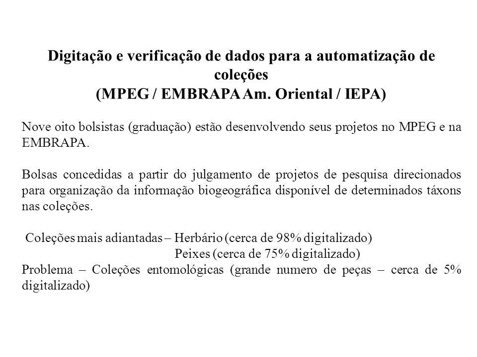 Digitação e verificação de dados para a automatização de coleções (MPEG / EMBRAPA Am. Oriental / IEPA) Nove oito bolsistas (graduação) estão desenvolv
