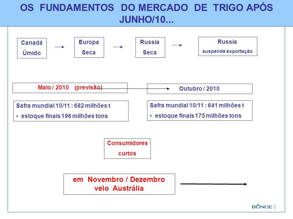 TRIGO NACIONALTRIGO NACIONAL : LIQUIDEZ SURGINDO COM EXPORTAÇÕES (VIA LEILÃO PEP DO GOVÊRNO) Alternativa Exportação Cabotagem